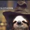 .Sloth